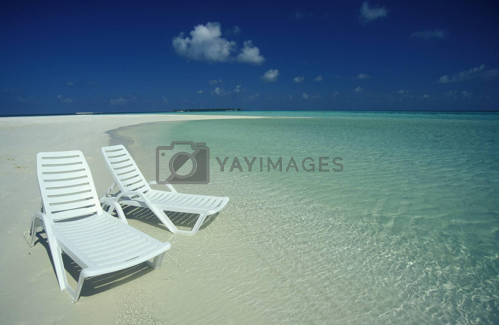 Der Traumstrand mit Palmen und weissem Sand an der Insel Velavaru im Southmale Atoll auf den Inseln der Malediven im Indischen Ozean.