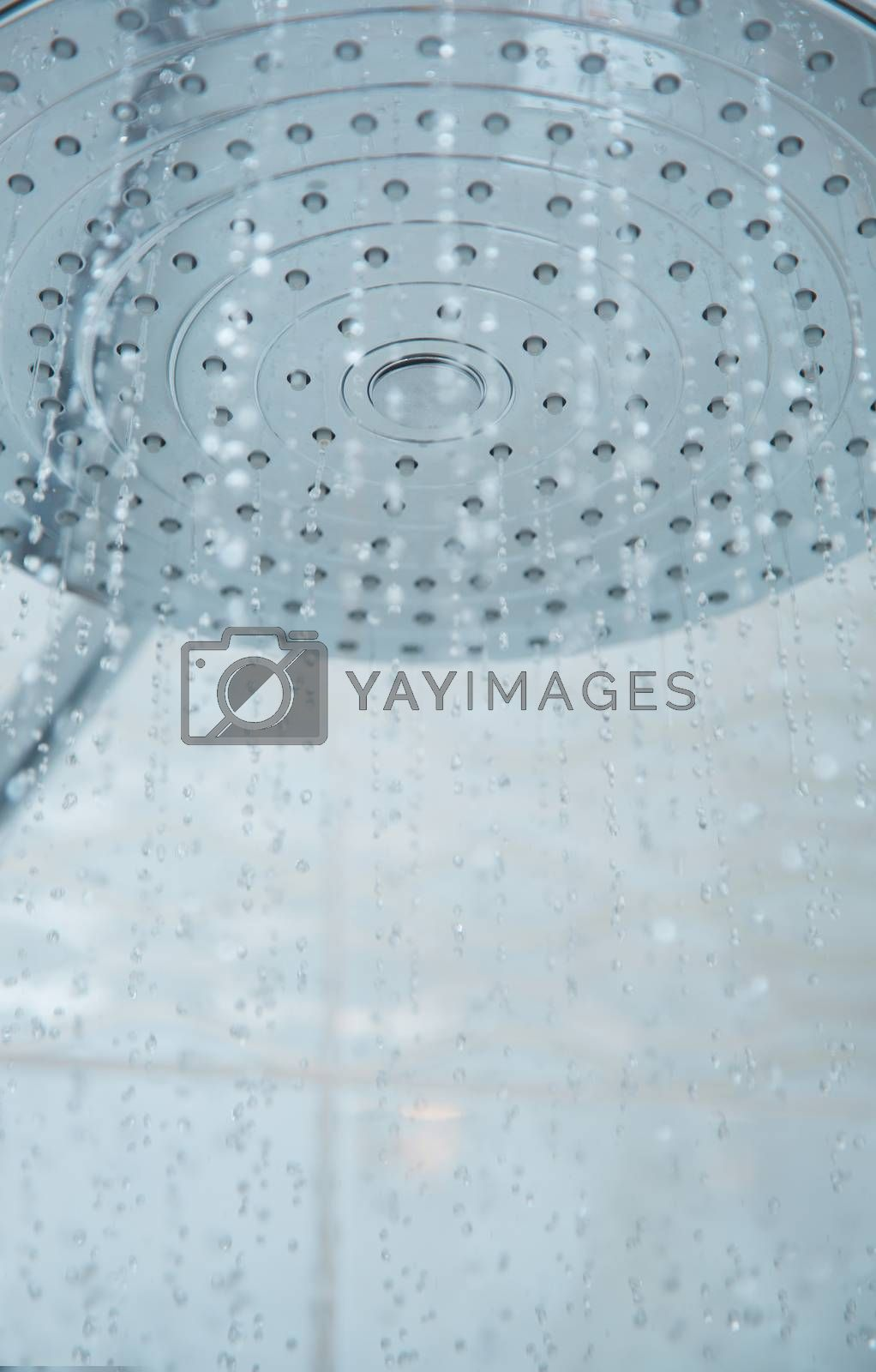 Shower head with flowing water by Novic