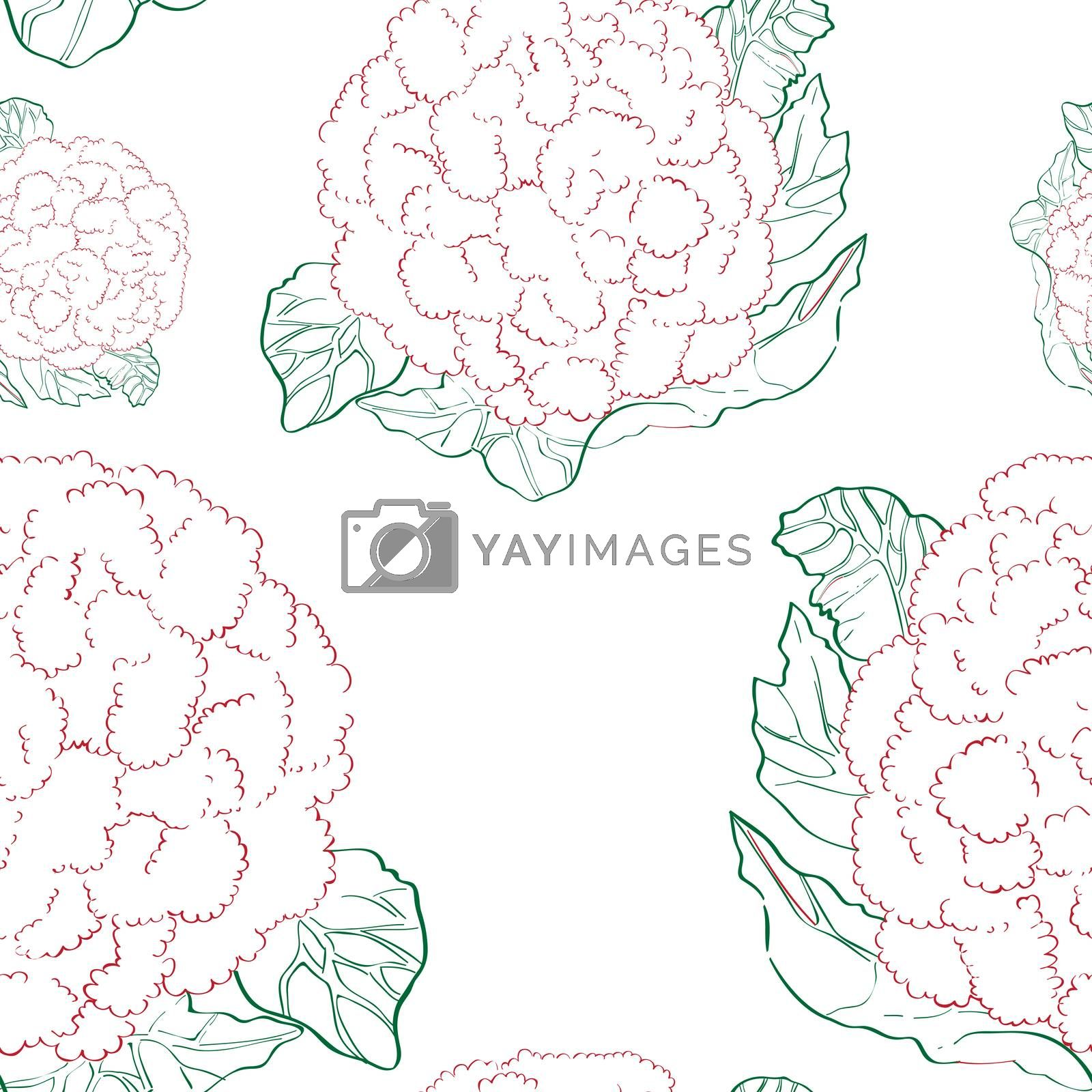 Seamless pattern with cauliflowers over white