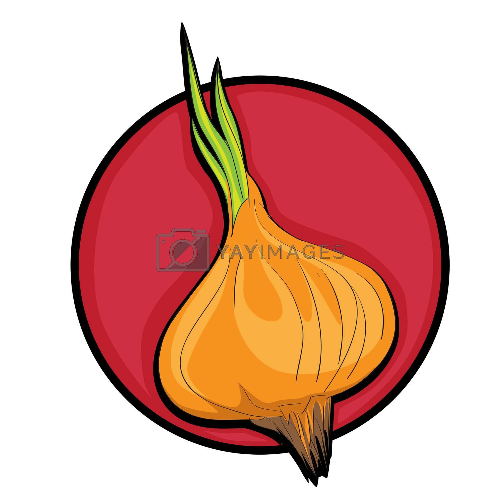 Beautiful onion clip art, cartoon illustration isolated on white
