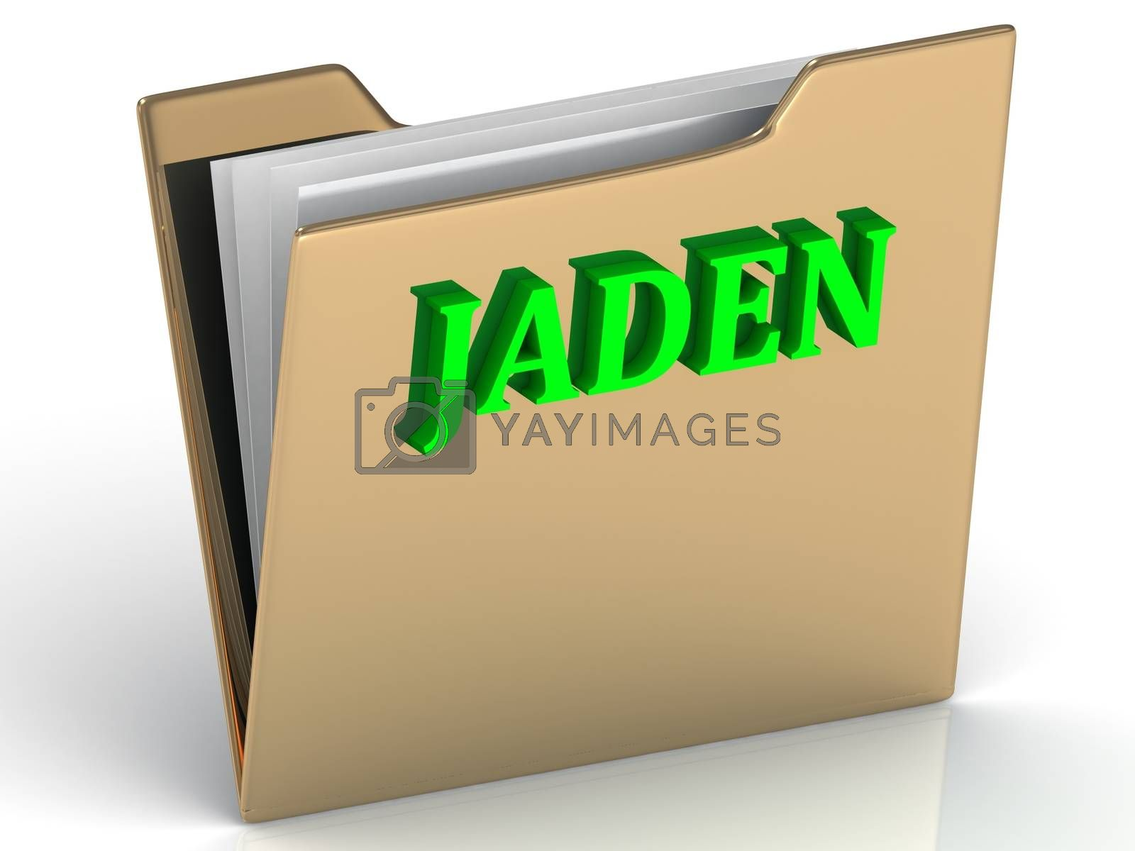 JADEN- Name and Family bright letters on gold folder on a white backgJADEN- bright green letters on gold paperwork folder on a white backgroundround