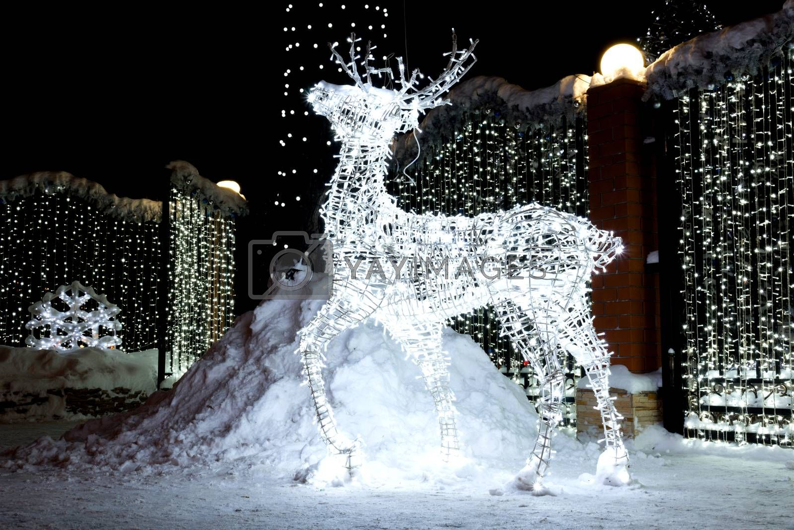 The photo depicts a Christmas reindeer from light bulbs