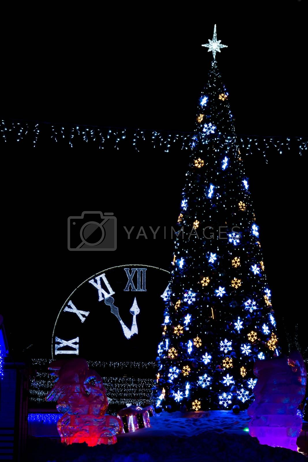 The photograph shows the tree with clock