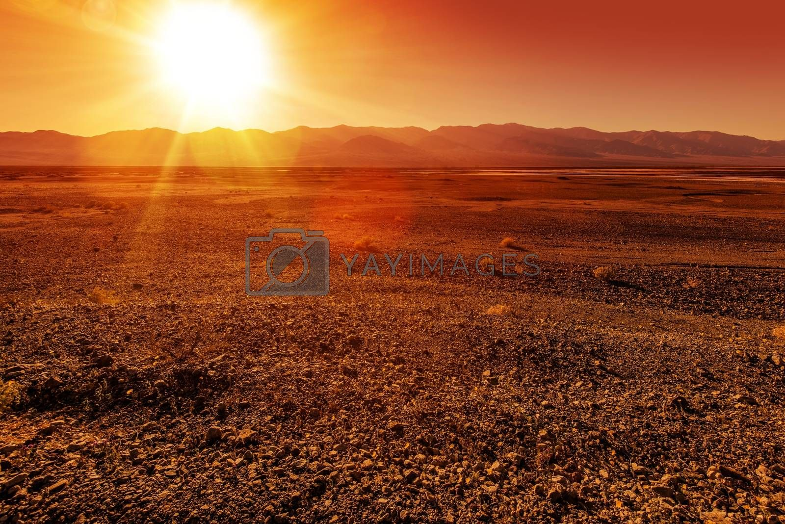 Unpleasantly Rough Death Valley Landscape. Harsh Valley Land. California, United States.