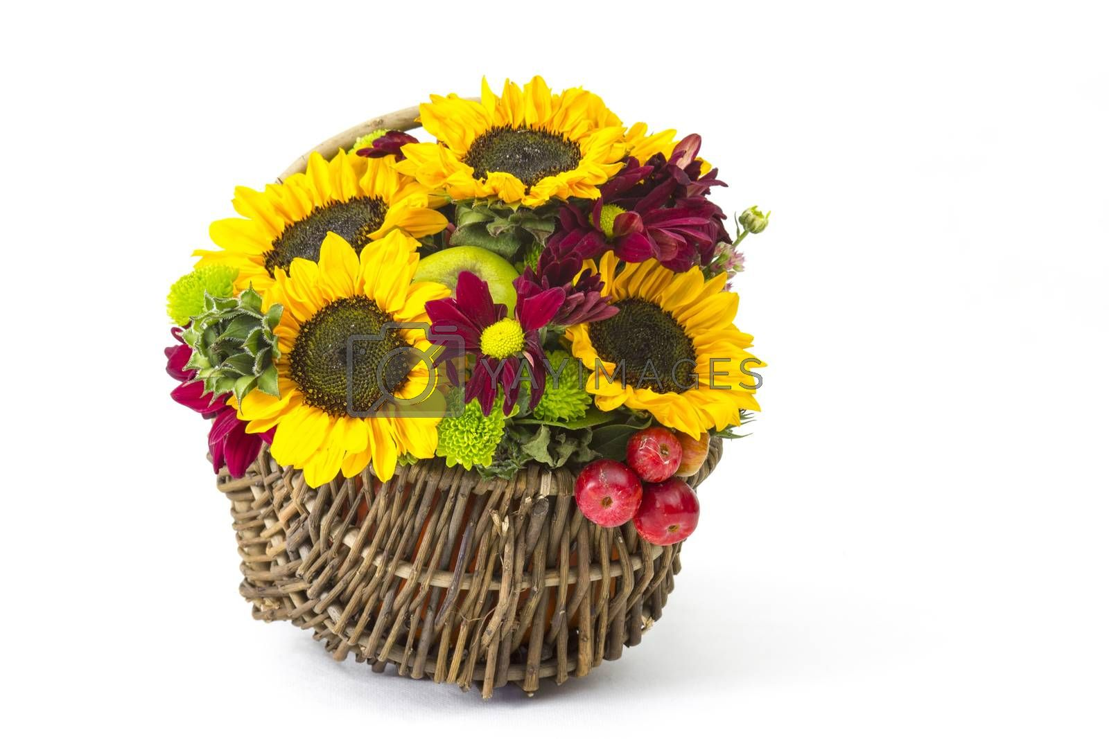 basket with autumnal flowers, berries and apples on white background