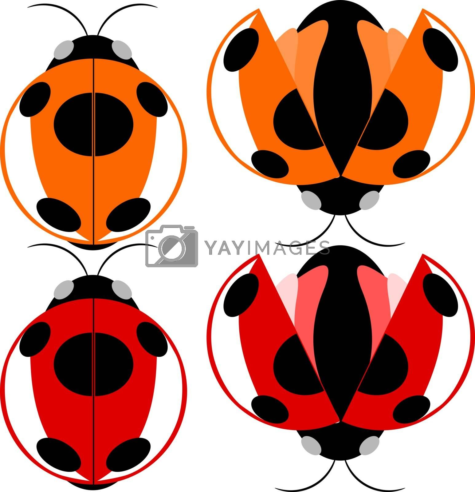 Beetle red and yellow fly cartoon illustration