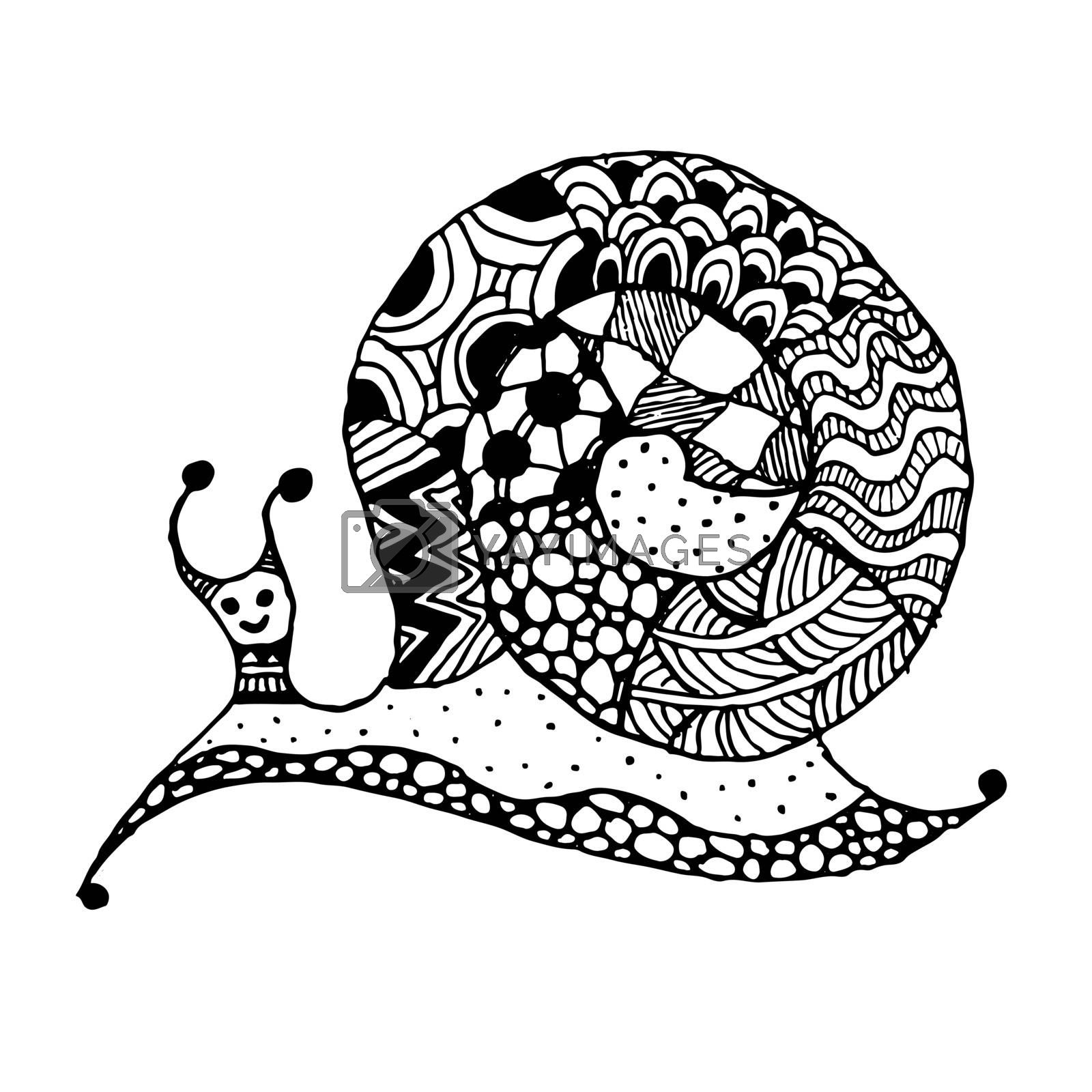 Art snail, zentangle style for your design. Vector illustration