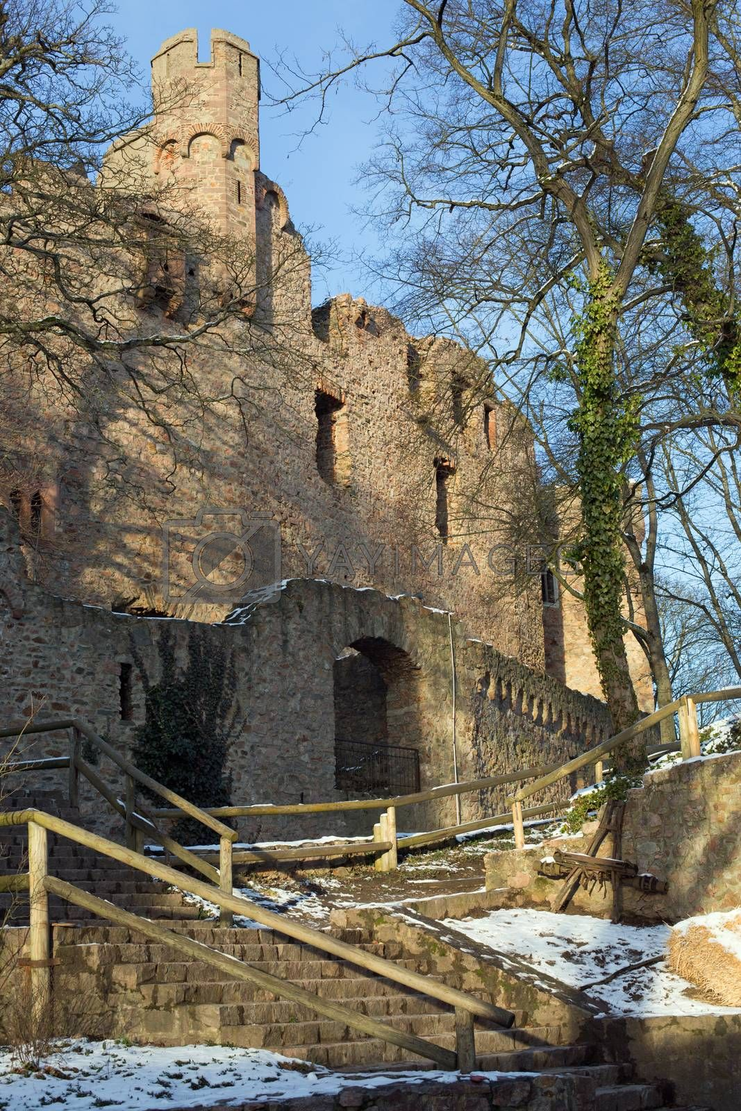 Royalty free image of Ruins castle Auerbach (Auerbacher castle) by HdDesign