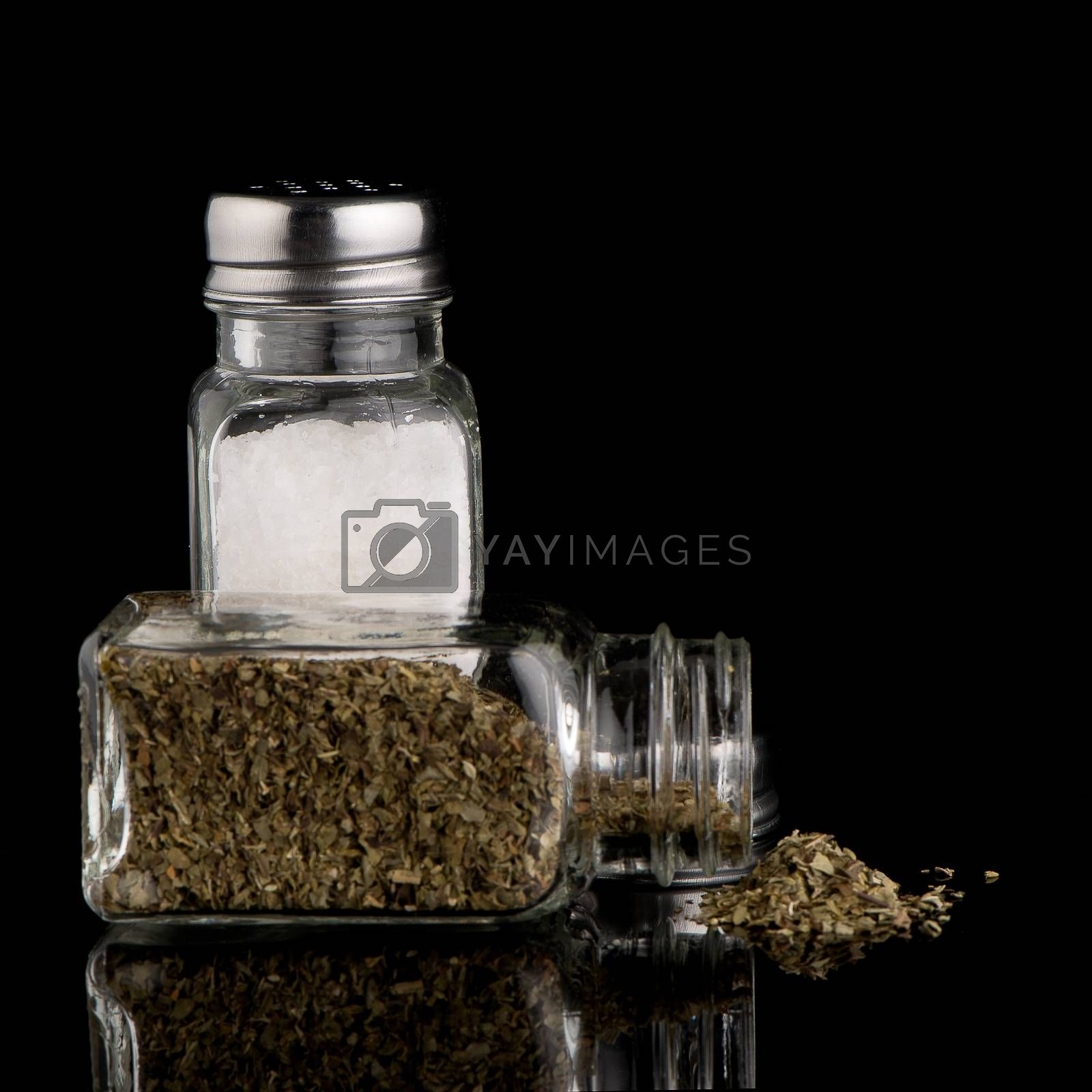 Royalty free image of  Salt and oregano shakers by homydesign