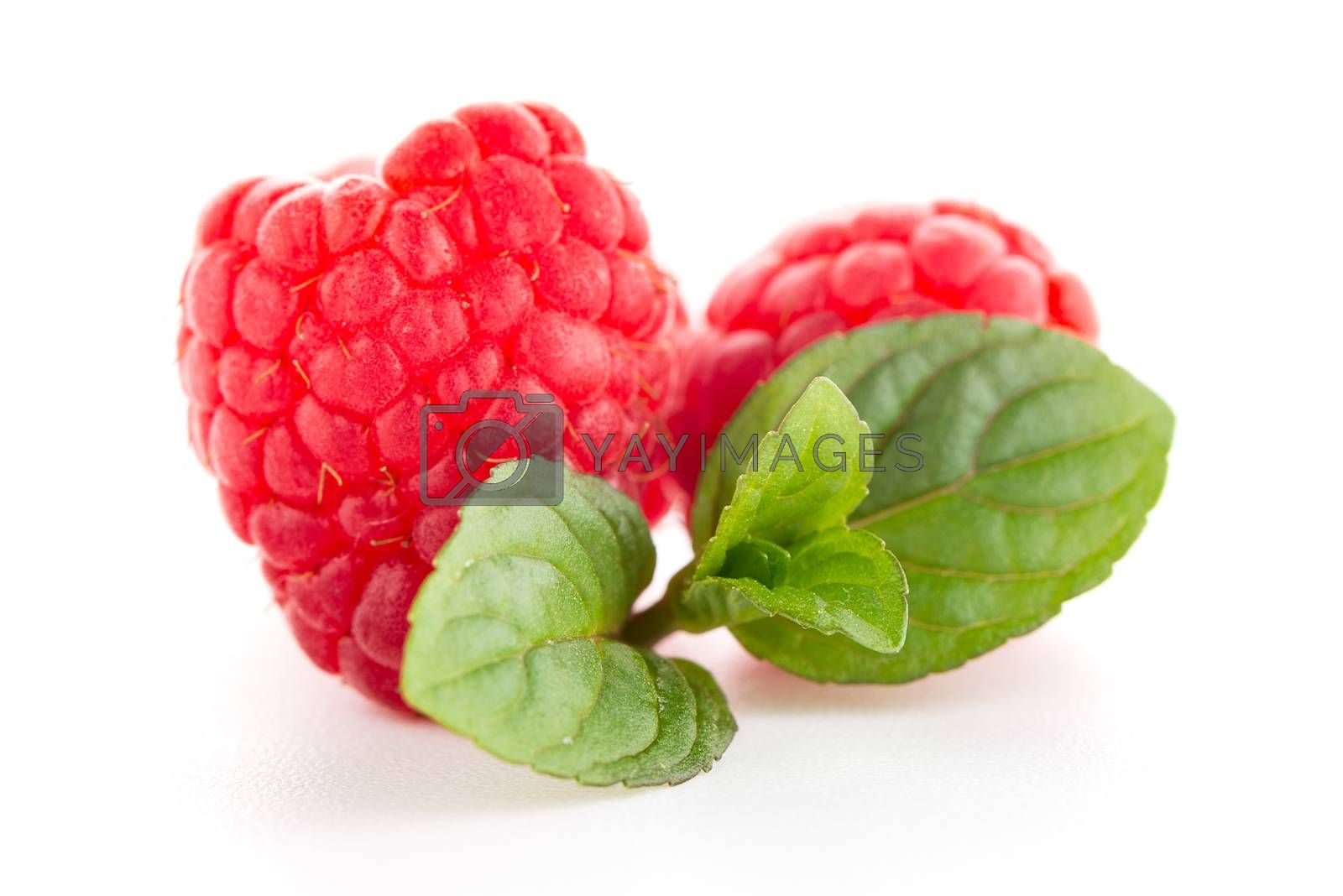 Royalty free image of Raspberries with leaves by homydesign