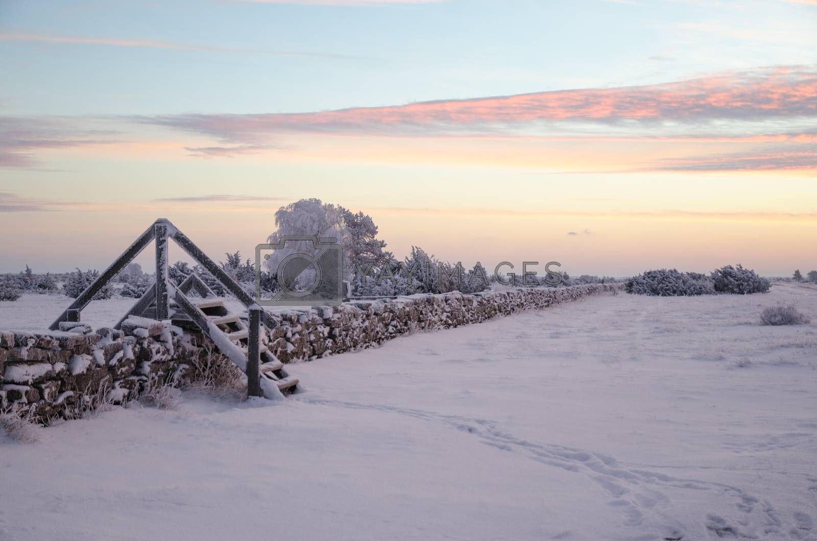 Royalty free image of Dawn at a winterland with a stile by olandsfokus