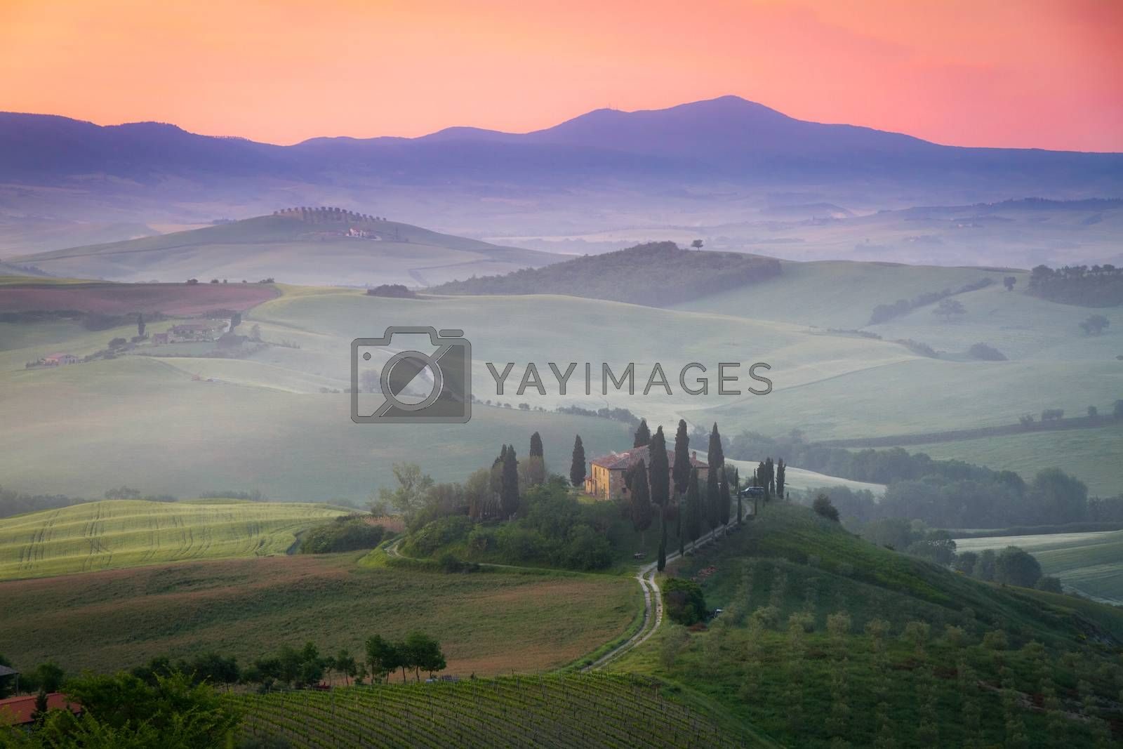 Royalty free image of Tuscany Farmhouse Belvedere at dawn, San Quirico d'Orcia, Italy by fisfra