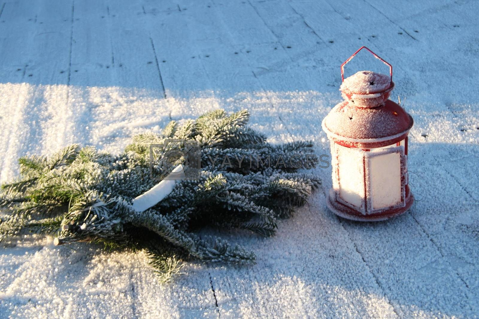 Royalty free image of Red lamp in frost by ehaugen