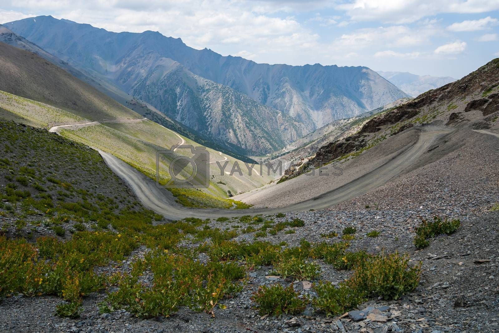 Royalty free image of Road in mountains by shkonst