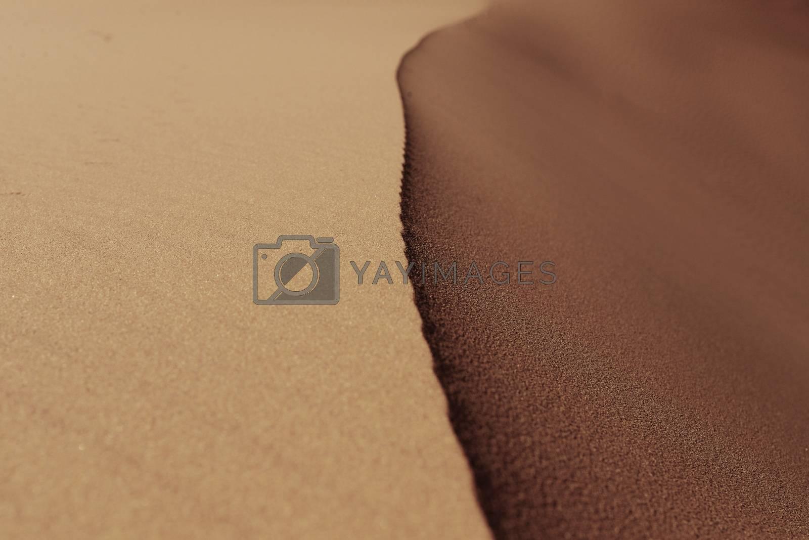 Royalty free image of Desert background by radekprocyk
