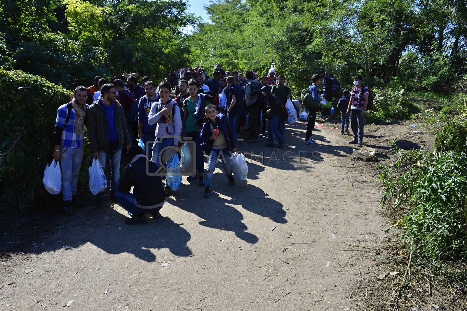 refugees in Babska (Serbian - Croatina border) by radekprocyk