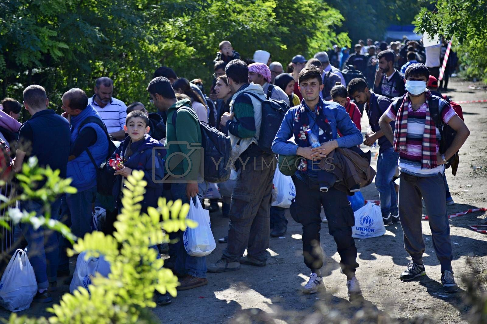 Royalty free image of refugees in Babska (Serbian - Croatina border) by radekprocyk