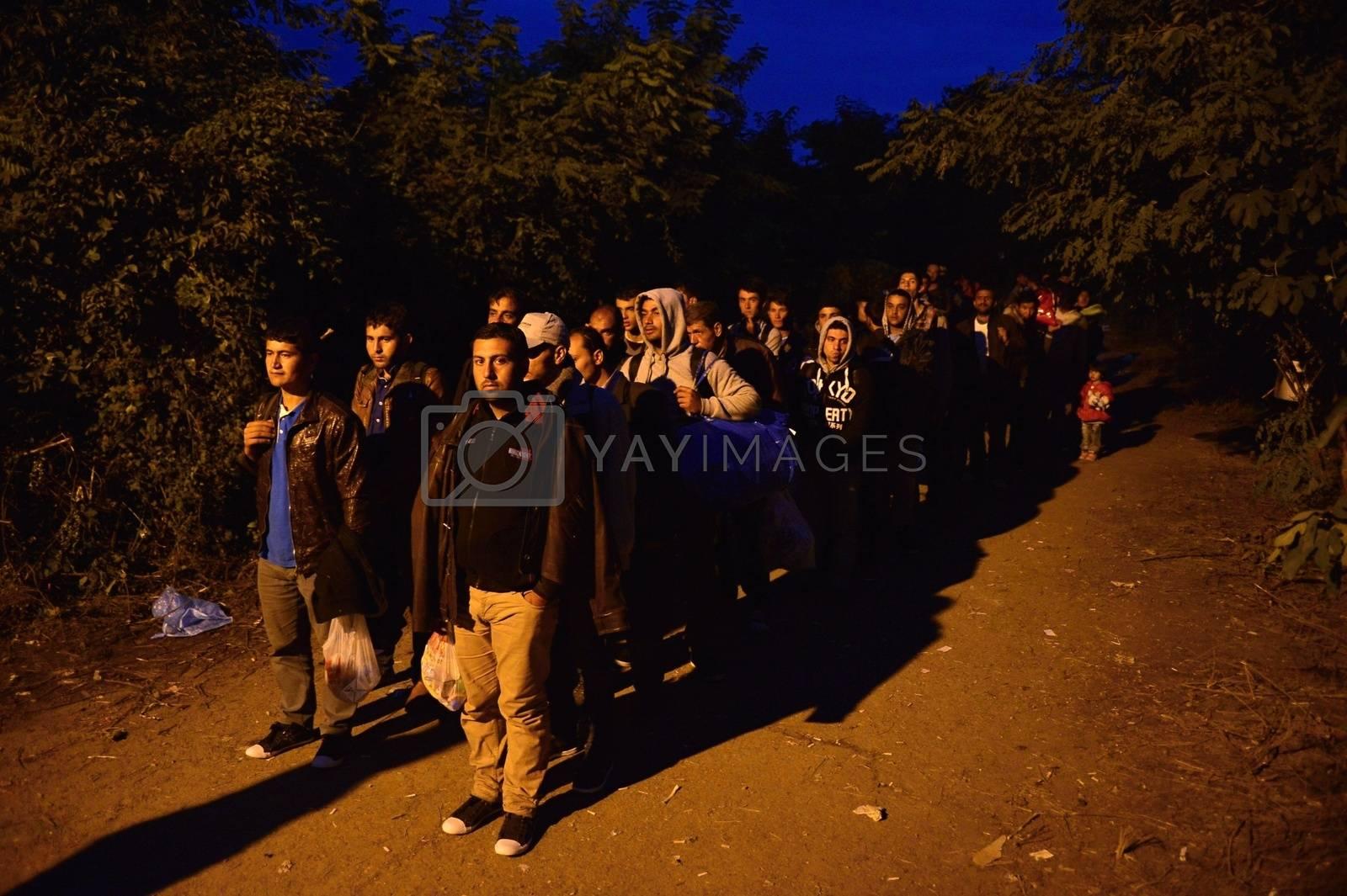Royalty free image of refugees in Babska (Serbian - Croatina border) by radekprocyk
