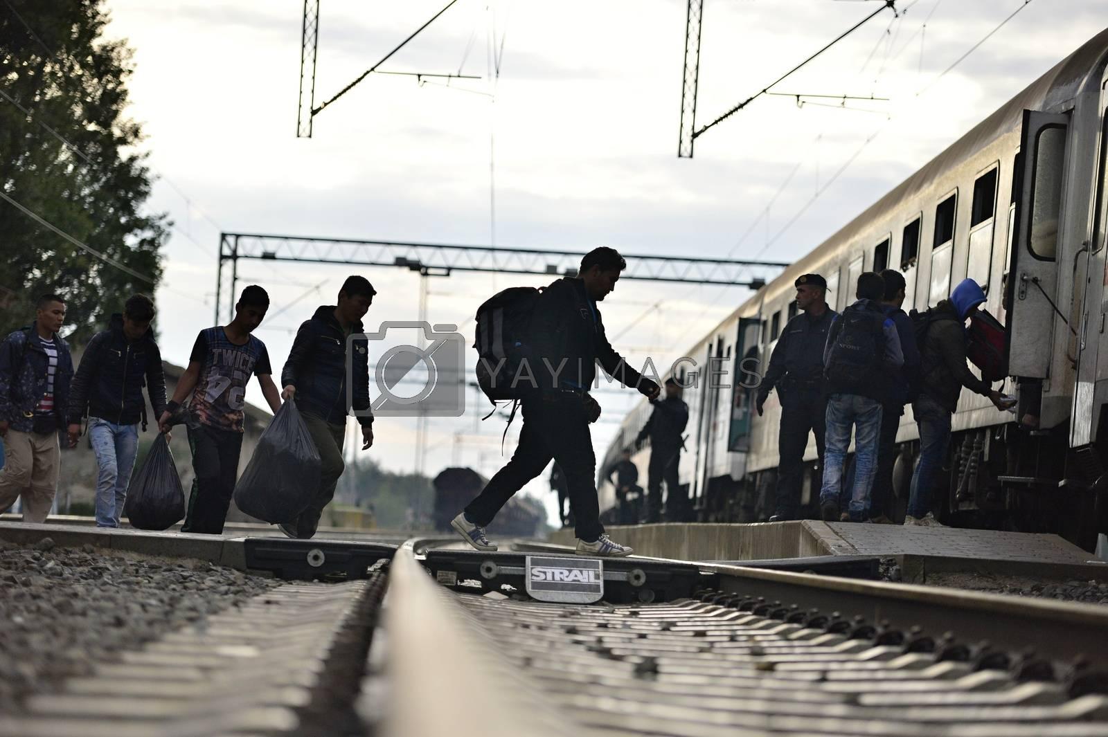 Royalty free image of refugees in Tovarnik (Serbian - Croatina border) by radekprocyk