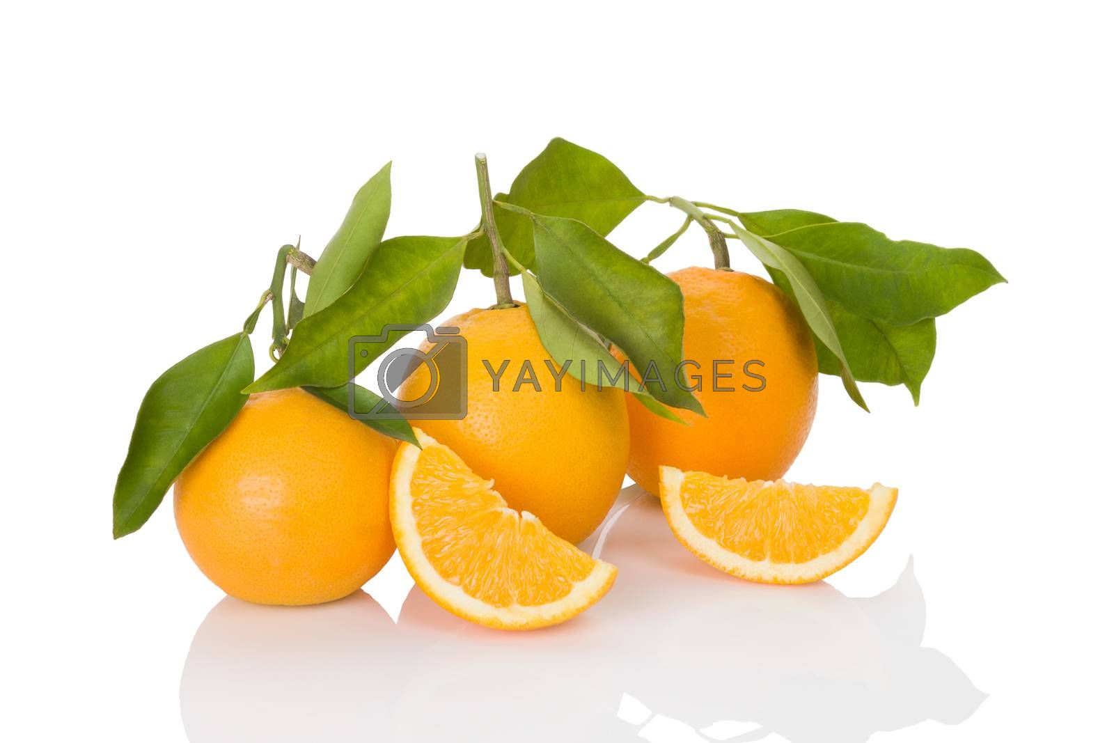 Delicious whole oranges with leaves and slices isolated on white background. Healthy fruit eating.
