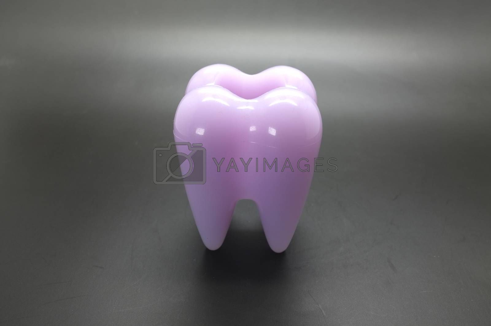 Human tooth model with hole