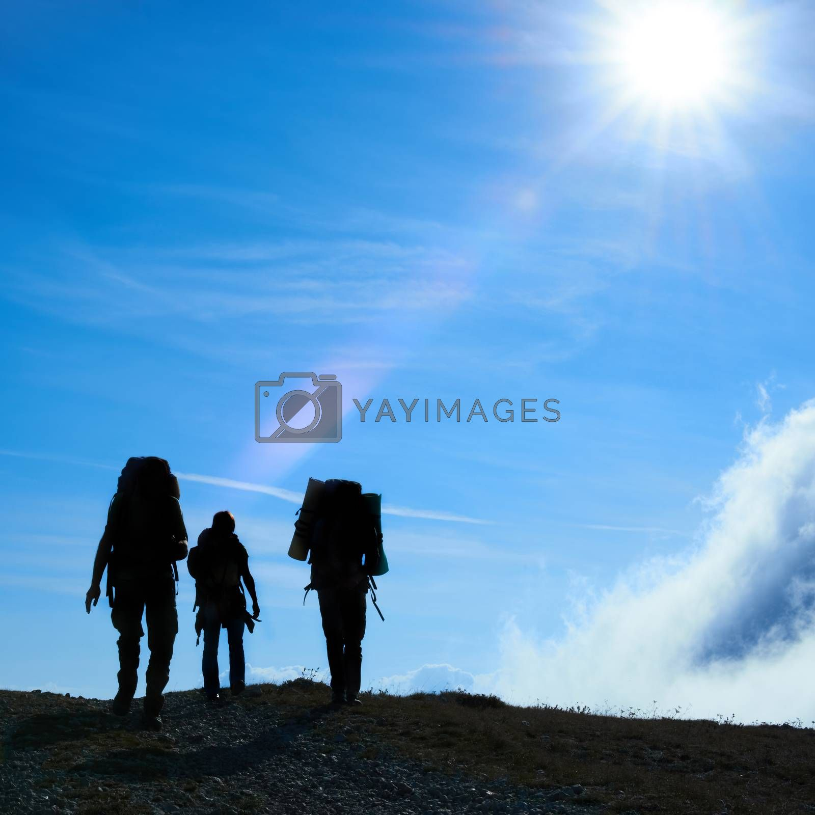 Silhouette of hiking friends against sun and blue sky