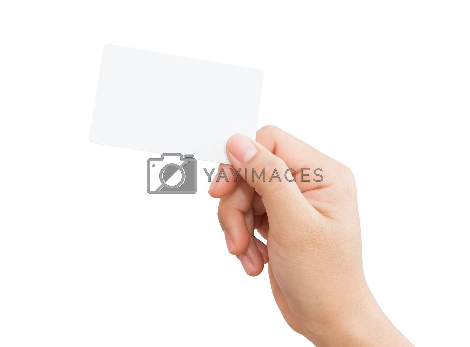 female hand holding blank card isolated clipping path in image data
