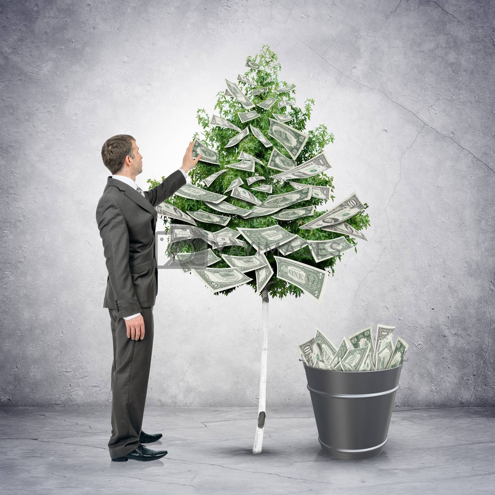 Businessman collecting money from tree with bucket full of money