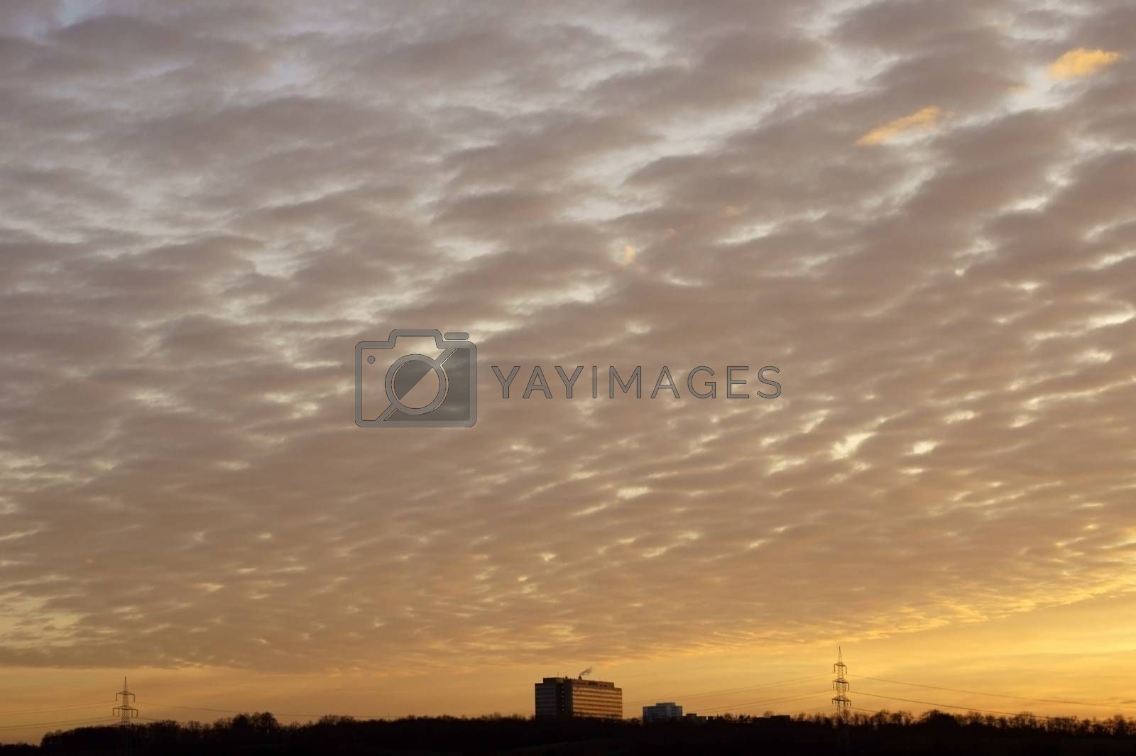Royalty free image of Sunset at the Lark hill by ginton