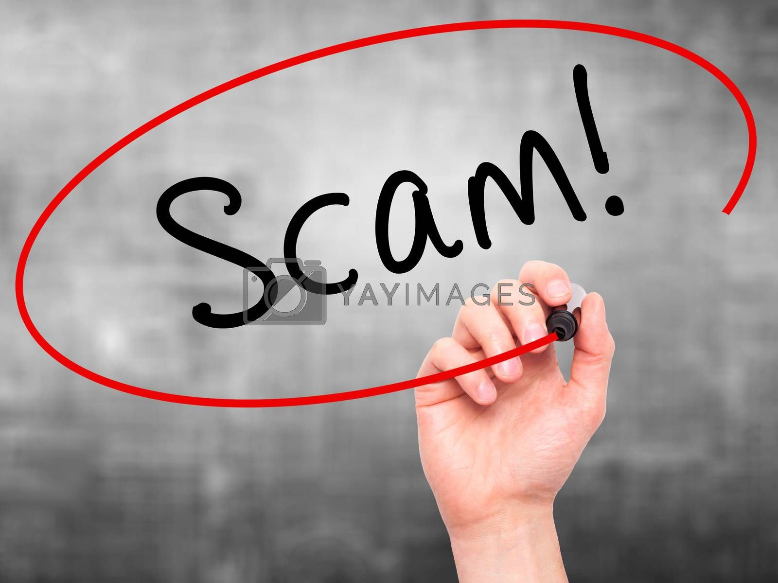 Man Hand writing  Scam! with black marker on visual screen. Isolated on grey. Business, technology, internet concept. Stock Image