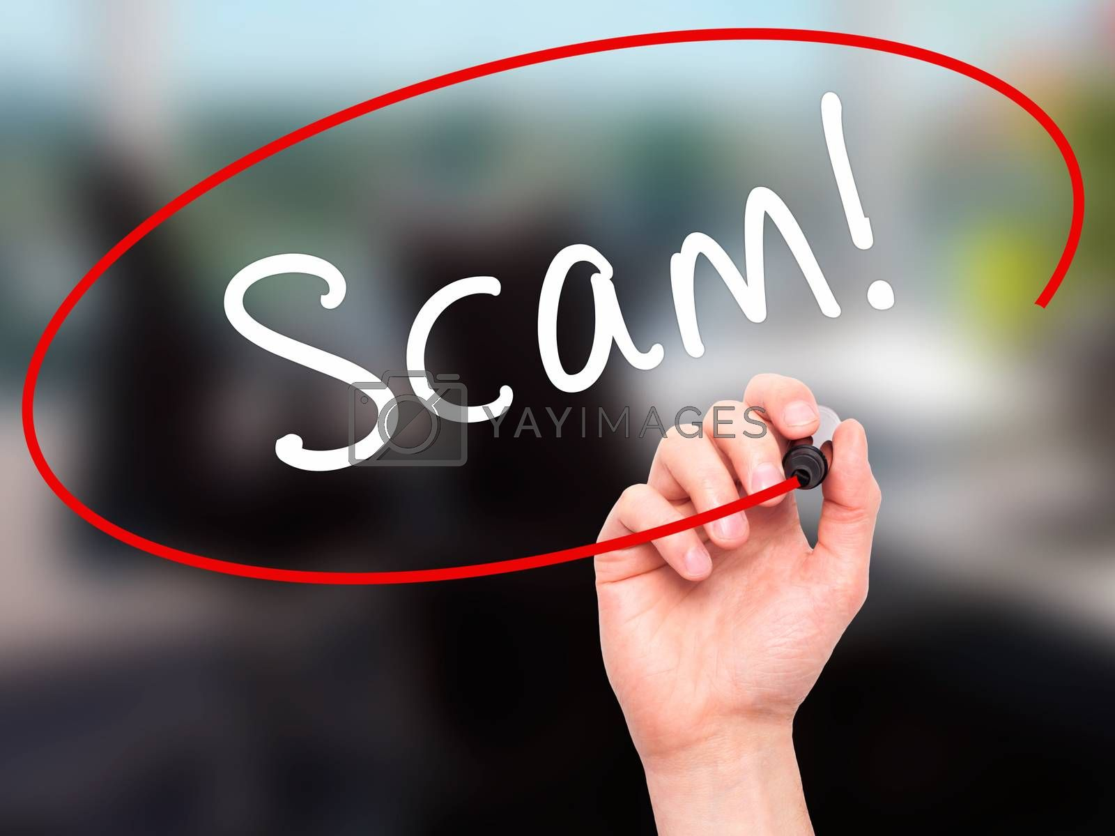 Man Hand writing  Scam! with black marker on visual screen. Isolated on office. Business, technology, internet concept. Stock Image