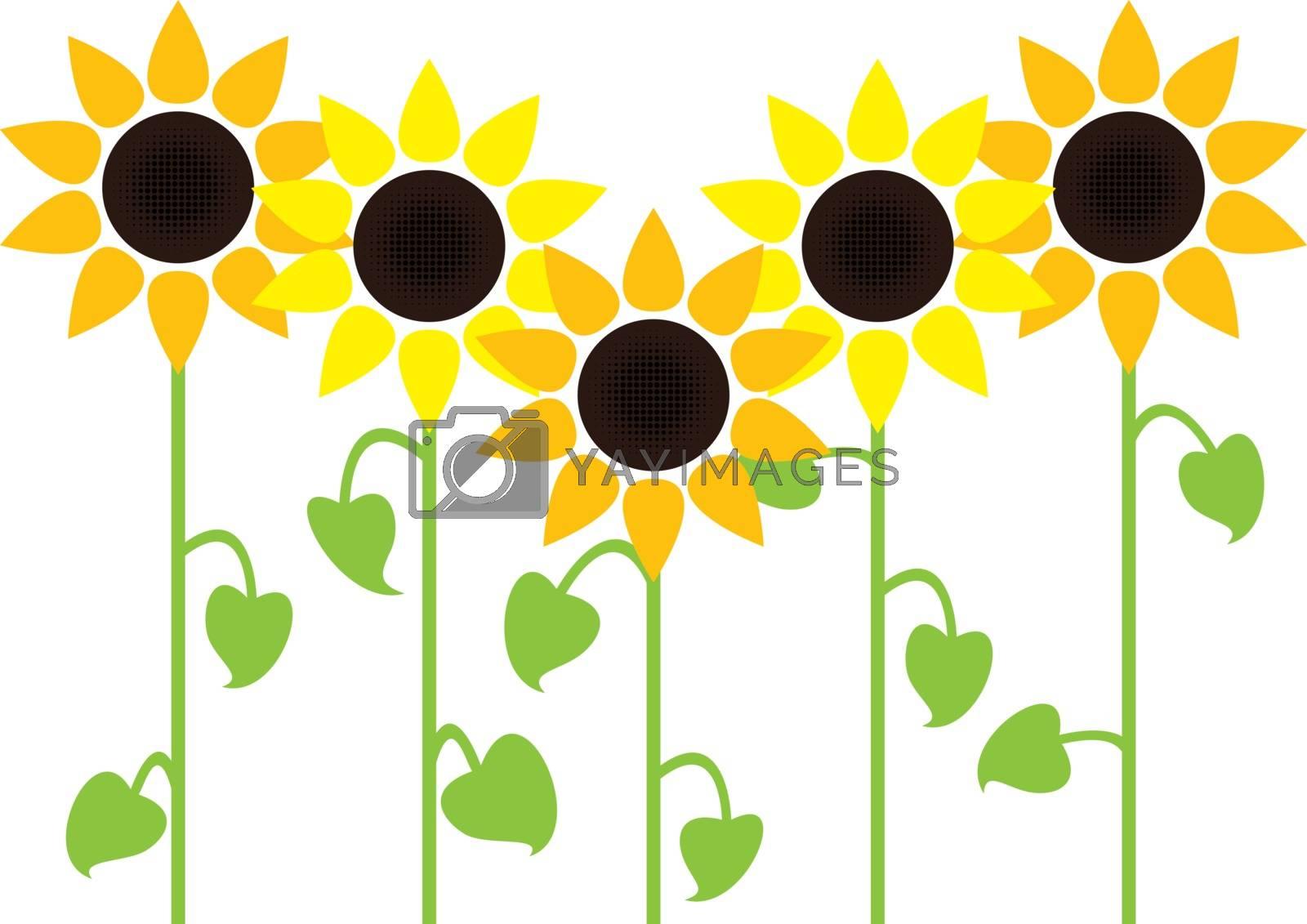 vector sunflower summer background