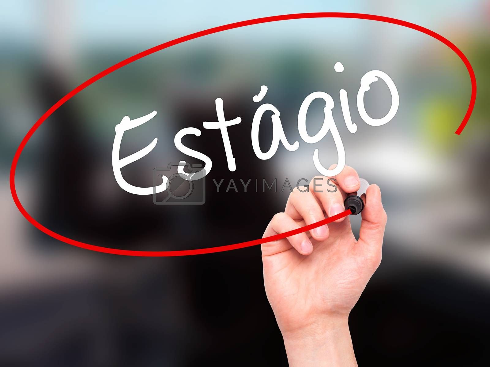 Man Hand writing Est�¡gio (Internship in Portuguese)  with black marker on visual screen. Isolated on office. Business, technology, internet concept.