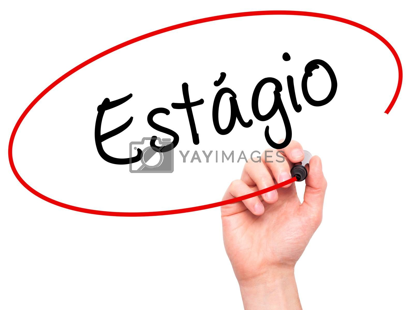 Man Hand writing Est�¡gio (Internship in Portuguese)  with black marker on visual screen. Isolated on white. Business, technology, internet concept.