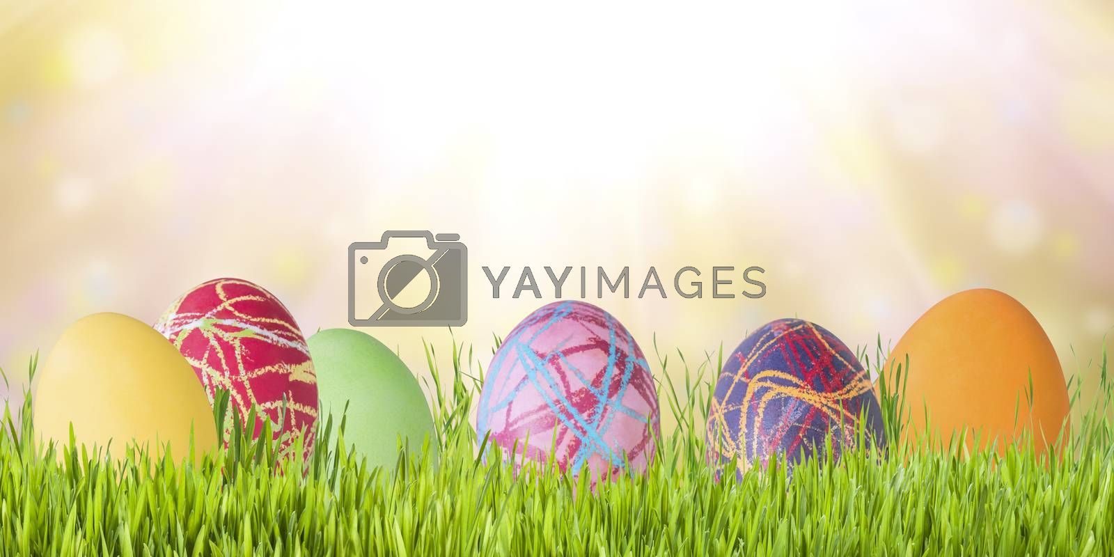 Easter holiday background with eggs and flowers