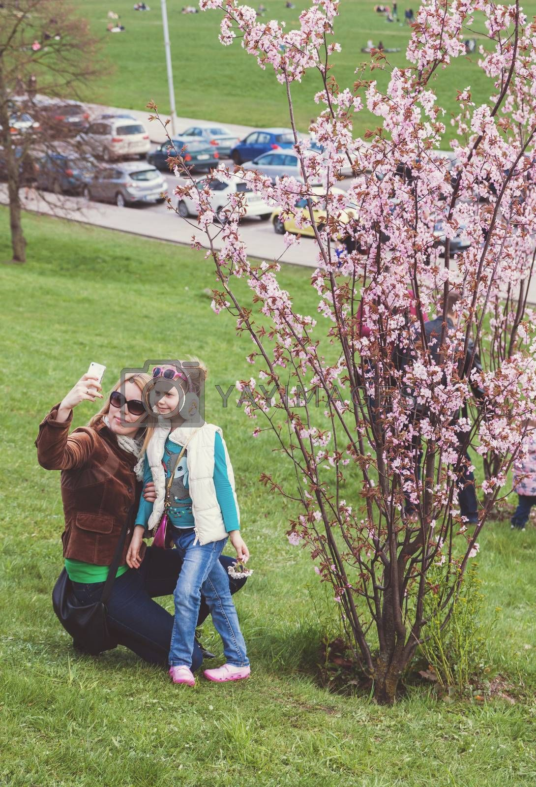 VILNIUS, LITHUANIA - APRIL 25, 2015: Mother taking selfie with her little daughter in front of blossoming cherry tree in Vilnius, Lithuania.