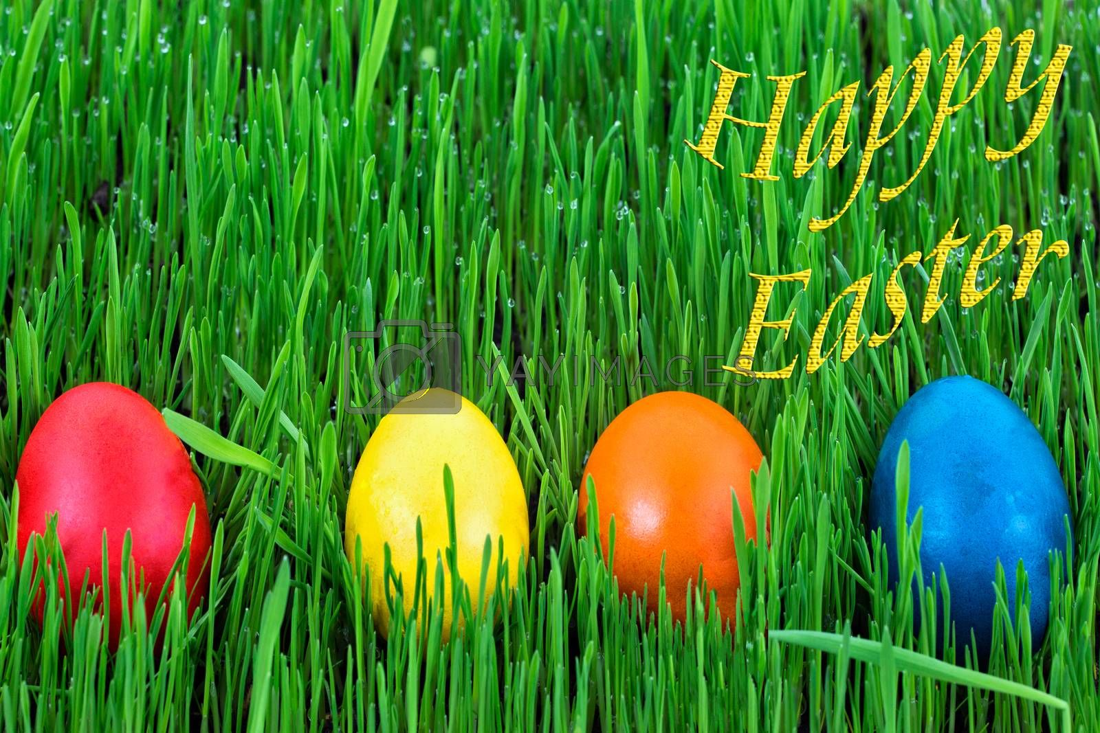 Happy Easter - Easter eggs in the green grass