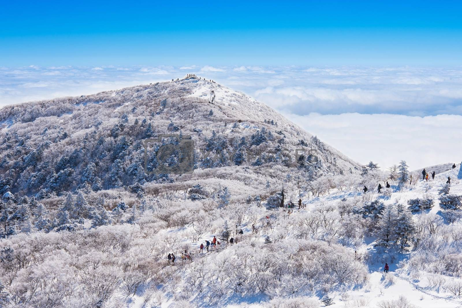 Landscape in winter,The highest point of mountain in Korea