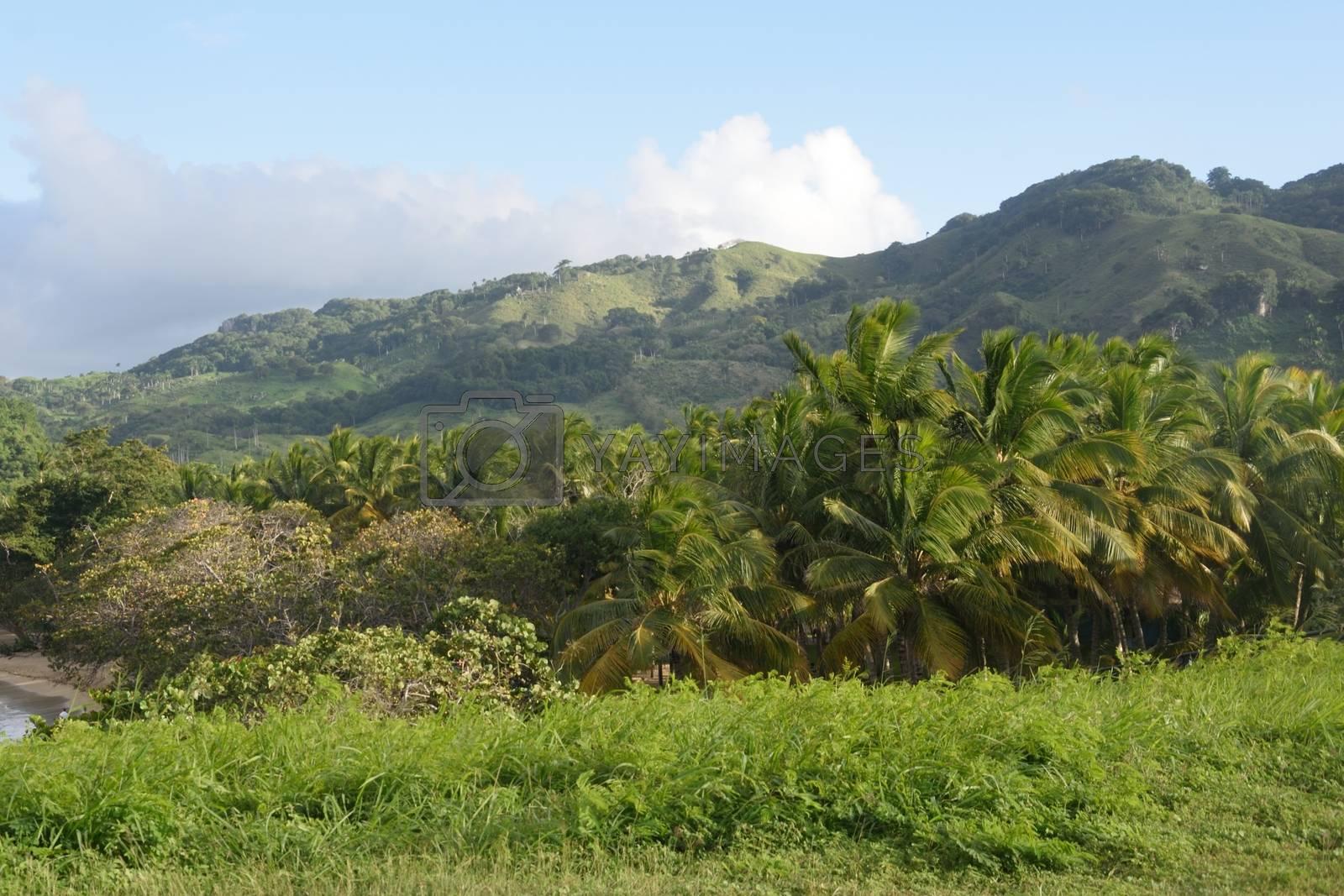 Caribbean landscape Dominican Republic