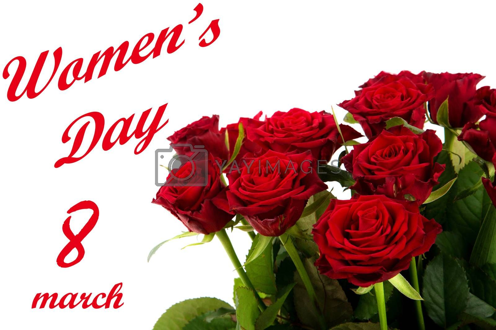 Happy Womens Day - red roses on a white background