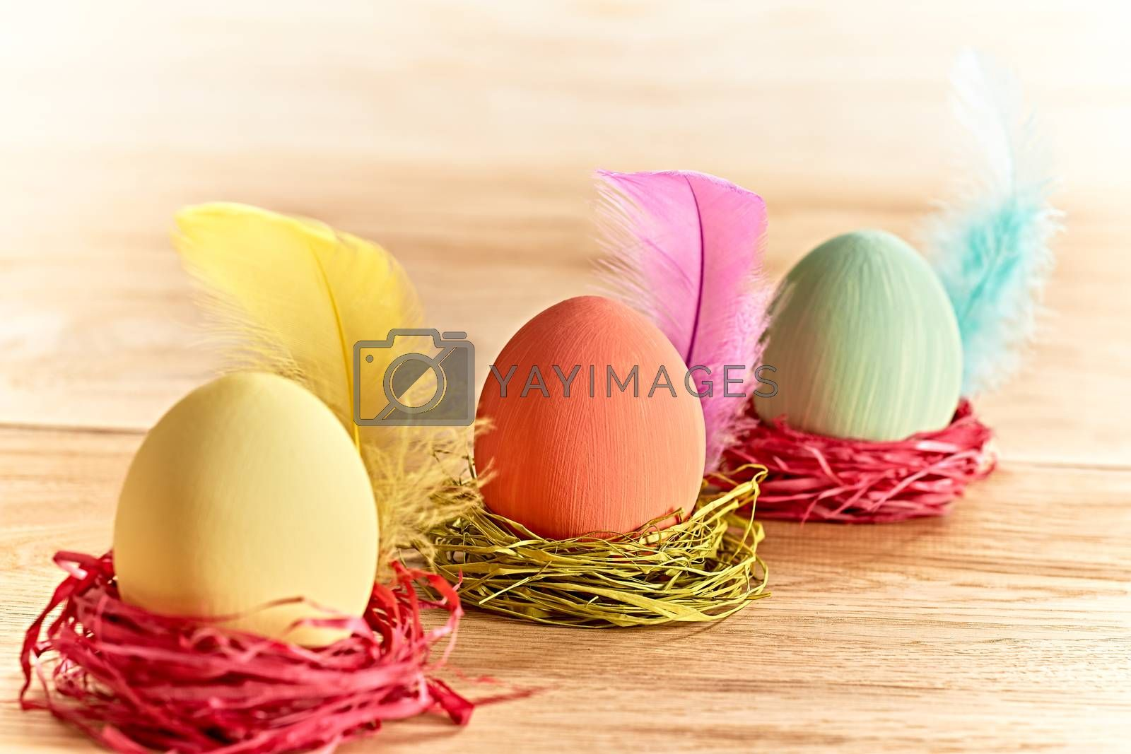 Easter eggs in nests. Hand painted decorated multicolored eggs with feathers on wooden background. Unusual creative holiday greeting card