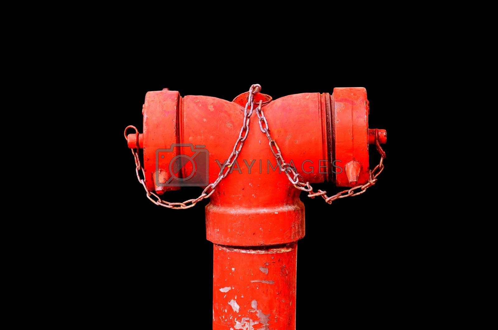Royalty free image of Head fire red  by raweenuttapong