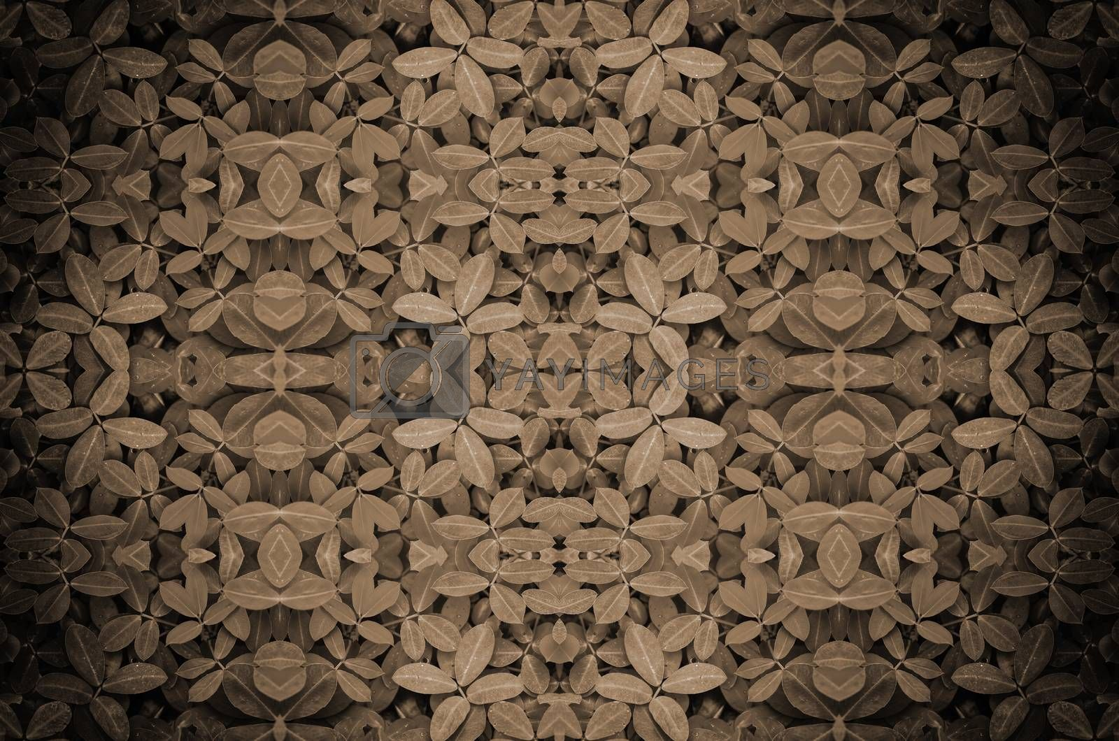 Royalty free image of leaf background by raweenuttapong