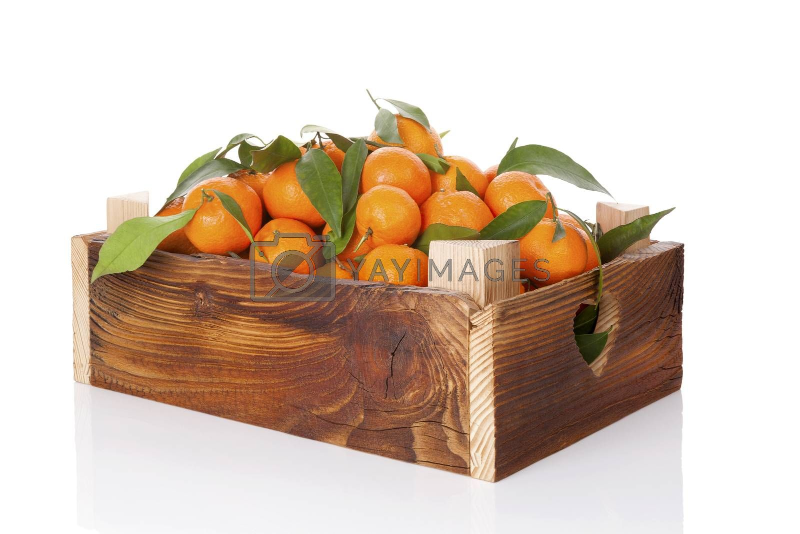 Fresh ripe mandarines with green leaves in wooden crate. Organic fresh mandarines, healthy fruit eating.