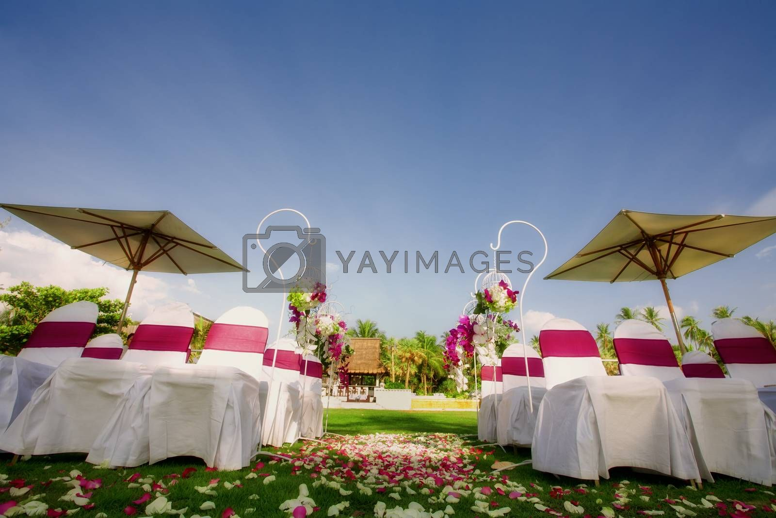 fragment like view of nice chairs ready for wedding ceremony