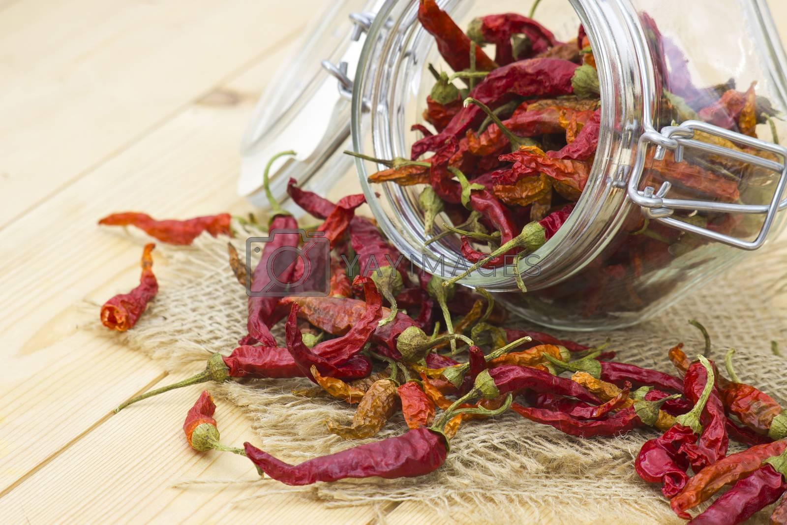 red chot chili peppers by miradrozdowski