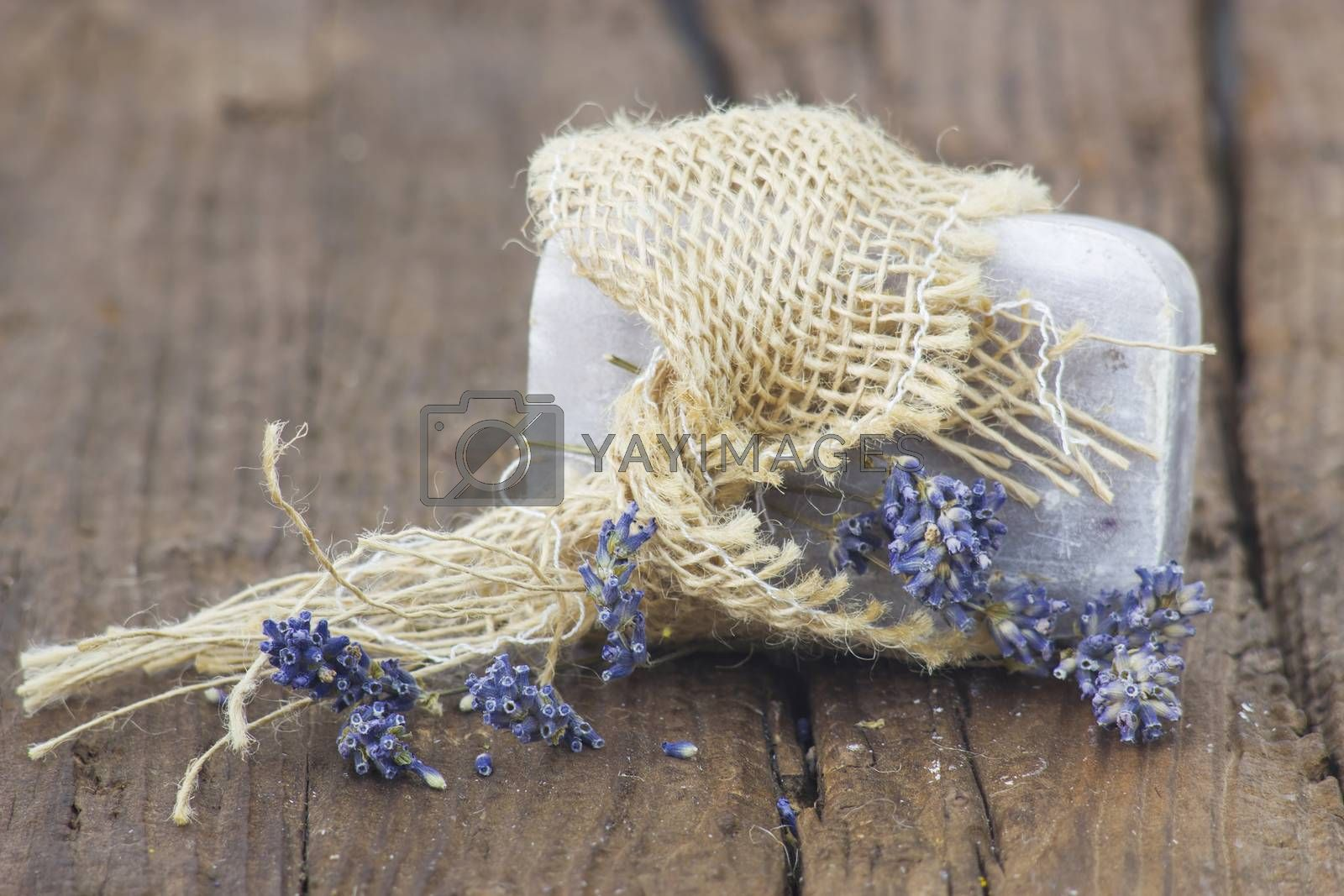 bar of natural soap with dried lavender