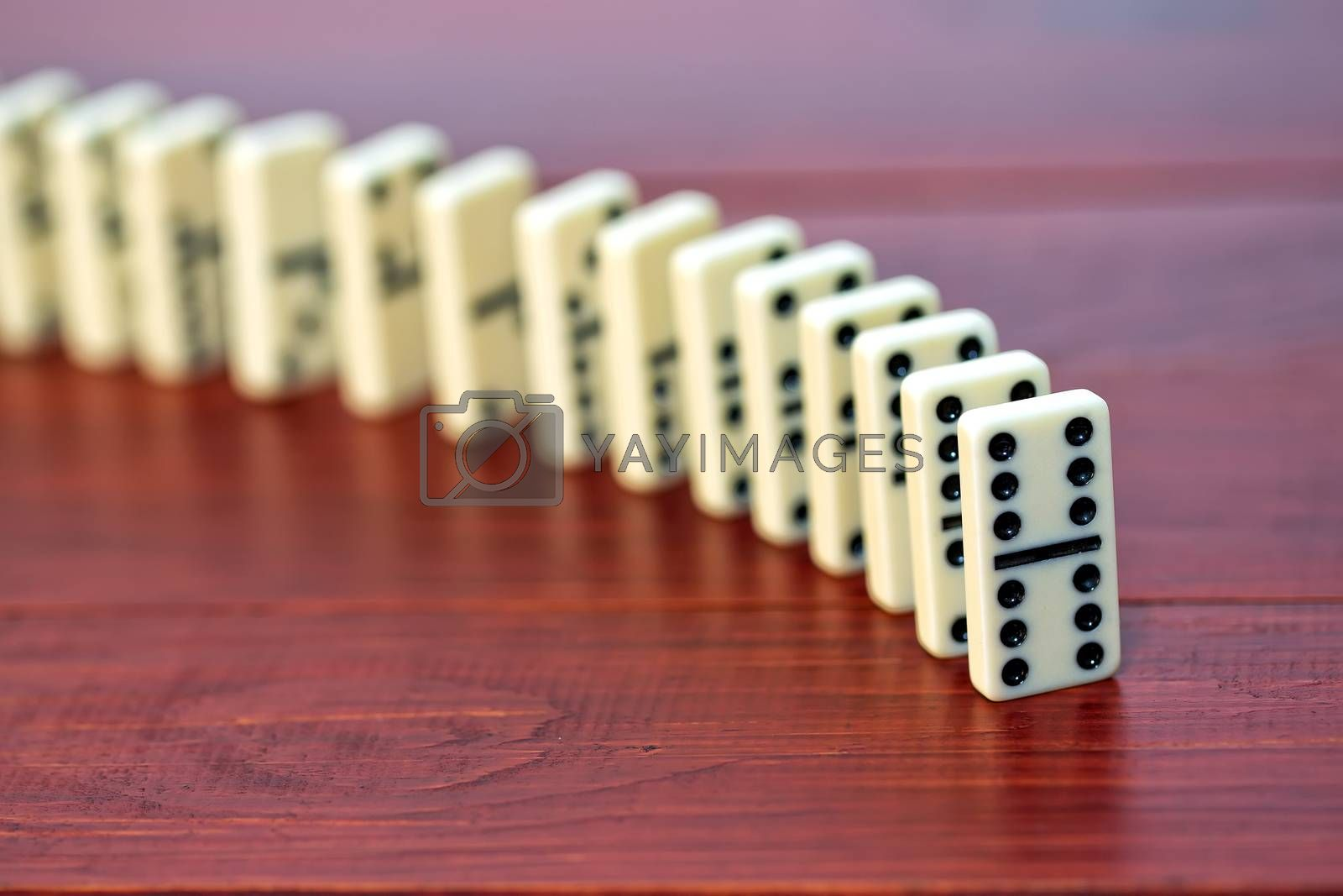 White dominoes on a wooden background