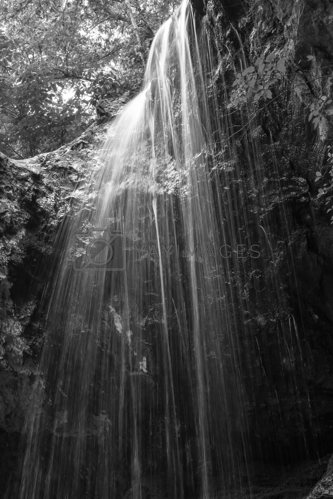 waterfall in the woods by TravisPhotoWorks