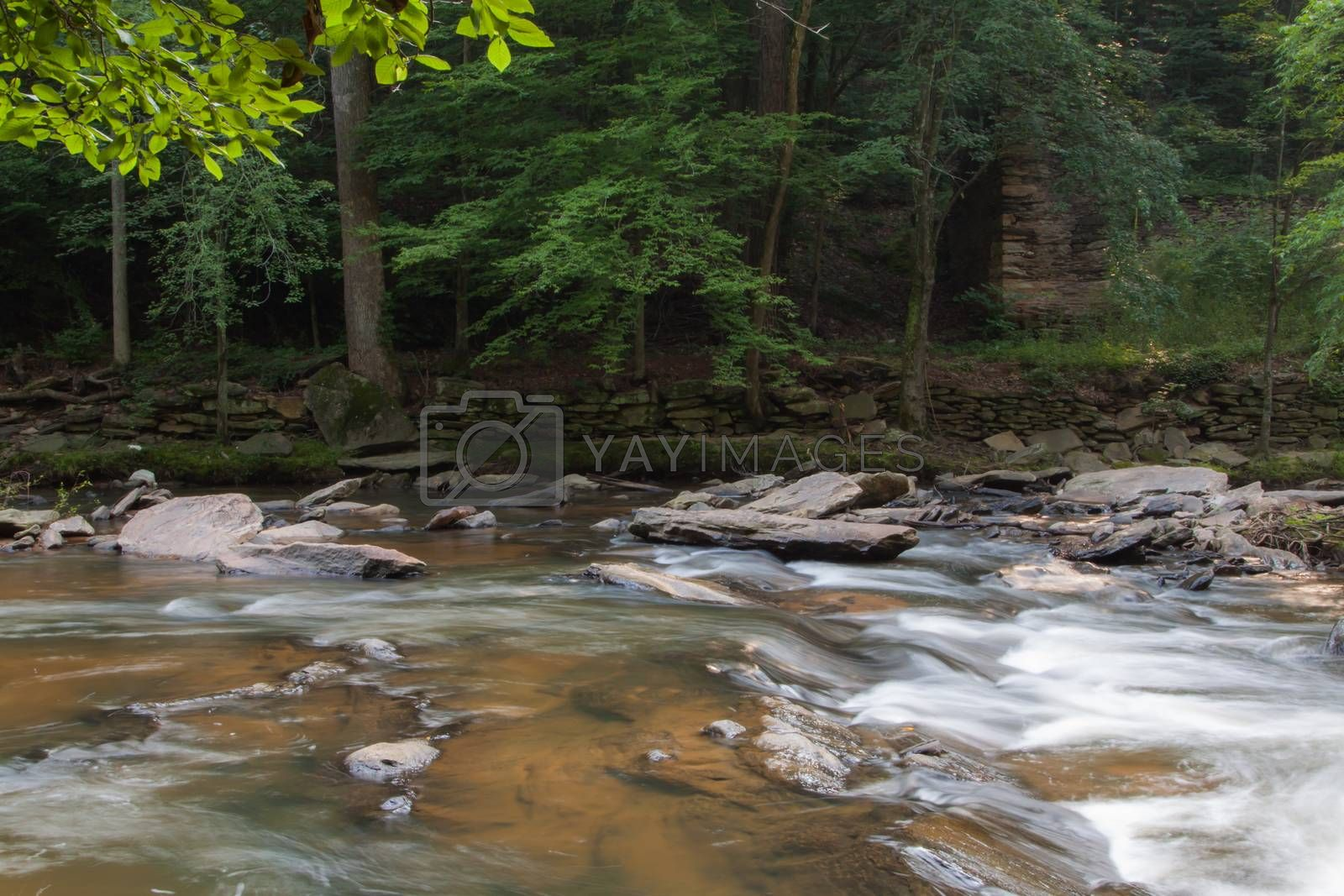 Sope Creek Mill by TravisPhotoWorks
